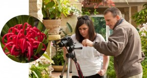 Private Photography Tuition with Shutterbug Walkabouts - individual one-on-one or with a friend