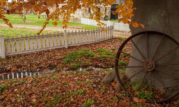 Shutterbug Walkabouts - Last of Autumn leaves at Redlands Estate