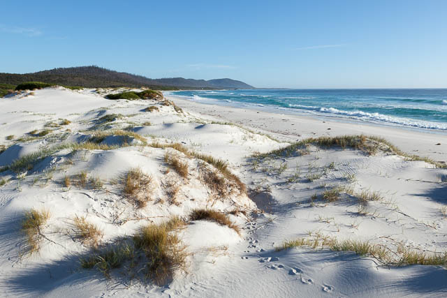 Sand dunes of Friendly Beaches, Freycinet National Park