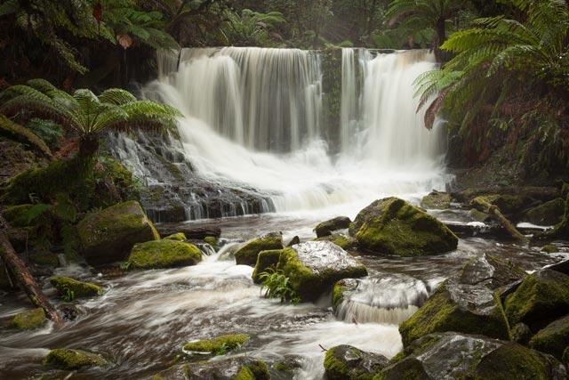 Mt Field - Horseshoe Falls