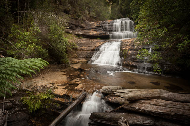 Lady Barron Falls, Mt Field National Park, Tasmania