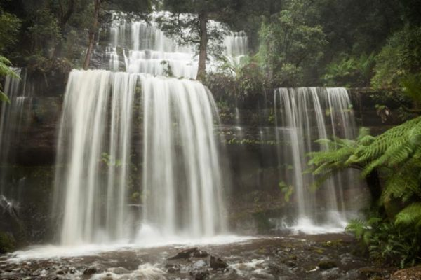 Mt Field - Russell Falls