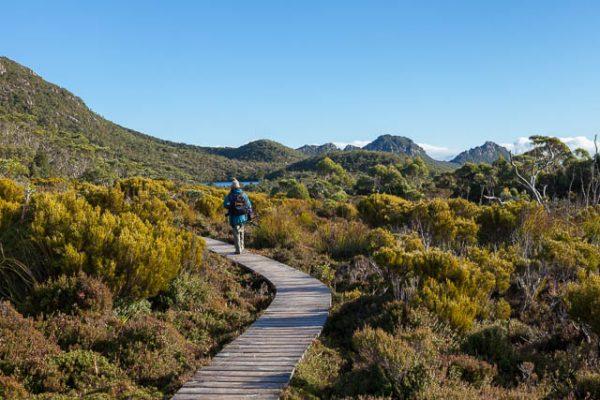Lake Osborne track, Hartz Mountains National Park, Tasmania - on tour with Shutterbug Walkabouts