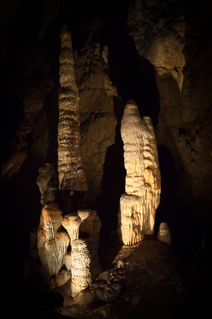 Stalagmites in Hastings Caves, Tasmania - photo shoot with Shutterbug Walkabouts