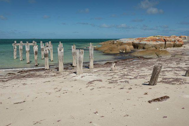 Shutterbug Walkabouts Tasmania - Flinders Island photography workshop