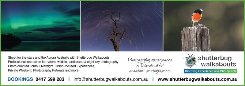 photography tours and tuition with shutterbug walkabouts