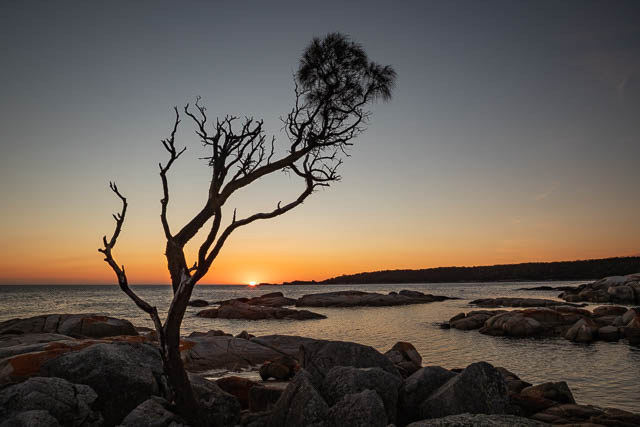Sunrise at Bay of Fires in Tasmania (in Binalong Bay) - a sample of what you may capture on a photography weekend with Shutterbug Walkabouts