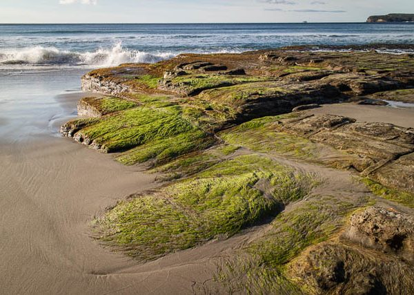 coastal-landscape_tessellated-pavement_eaglehawk-neck_tasman-peninsula-tasmania_winter-morning_CV-0249