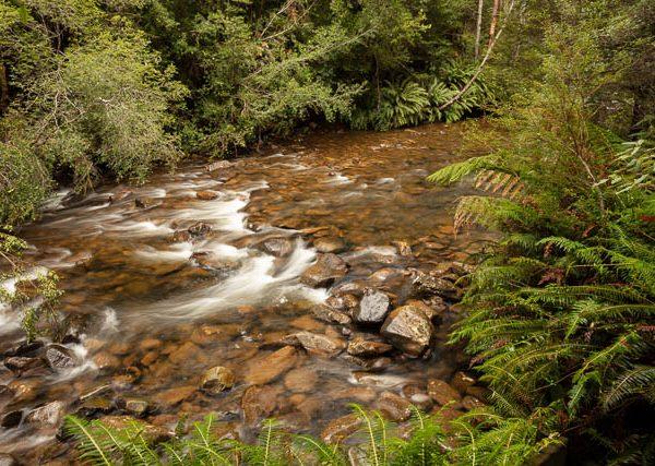 Huon River in southern Tasmania