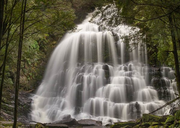 Nelson Falls, Franklin-Gordon Wild Rivers National Park - Tasmania's Western Wilds