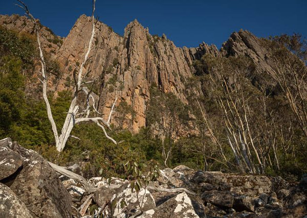 Organ Pipes dolerite escarpment - Mt Wellington, Hobart, Tasmania