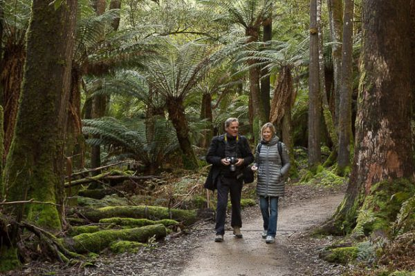 Photographer and non-photographer travel companion on a photo-oriented day tour to Mt Field National Park with Shutterbug Walkabouts, Tasmania
