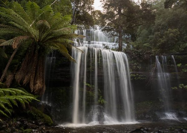 Russell Falls, Mt Field National Park, Derwent Valley, Tasmania