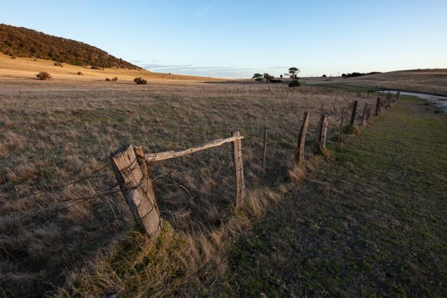 Farm fencing at sunset on Flinders Island