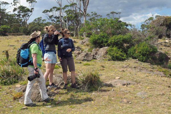 Coreena guiding a tour on Maria Island (Photo credit: Brad Hedgm
