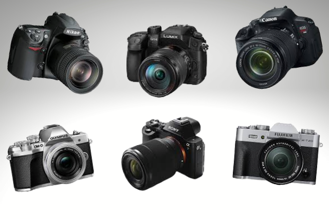 whatever brand and model your camera is, Shutterbug Walkabouts can help you drive it