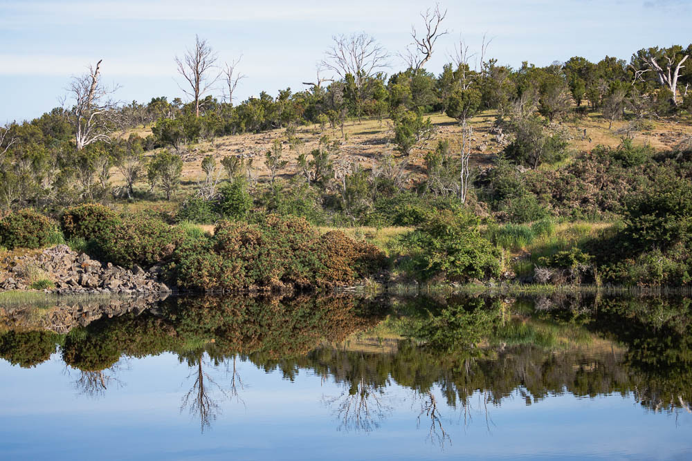 Reflections on Rathmore dam