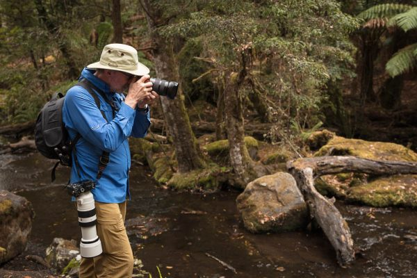 Photographer's day out  - Mt Field National Park